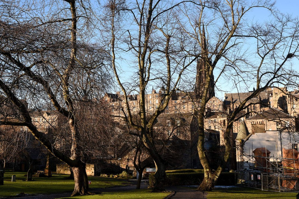 Greyfriars Churchyard - spot the control on a tree!
