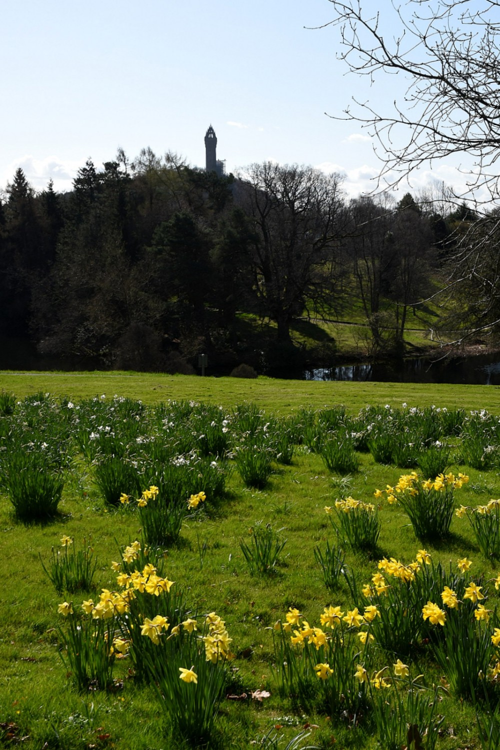 Wallace Monument from near Assembly