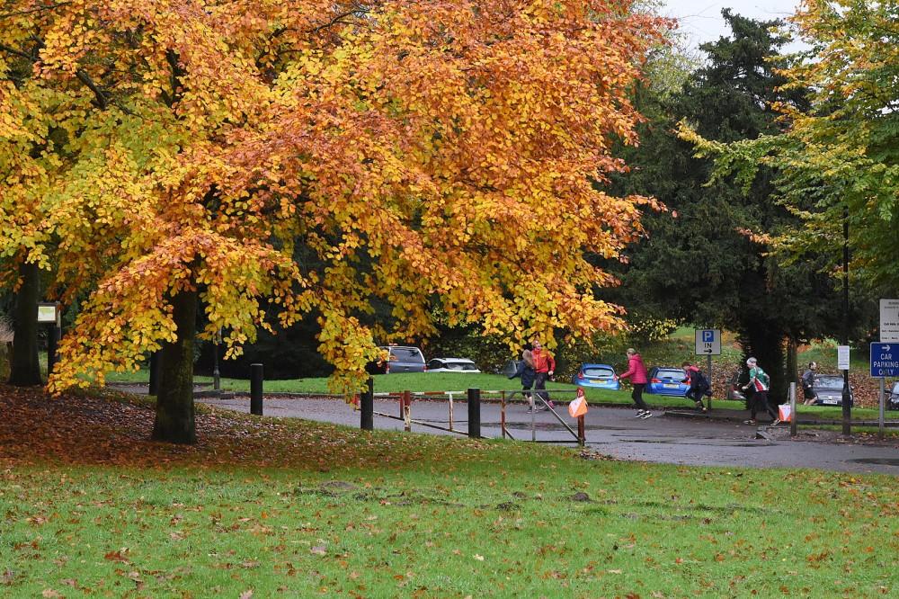 Autumn colour at the car park