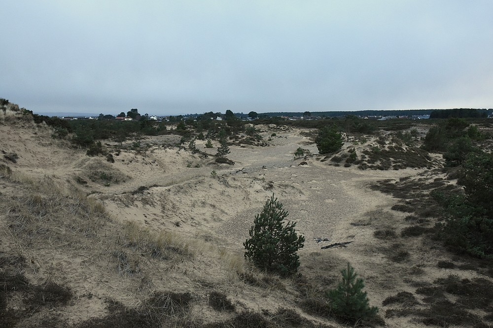 Findhorn dunes - view NW