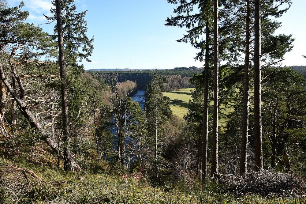 View SE aong the Findhorn