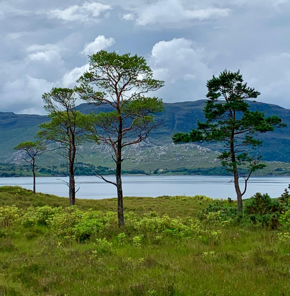Day 4 - Ben Shieldaig from the N side of Upper Loch Torridon