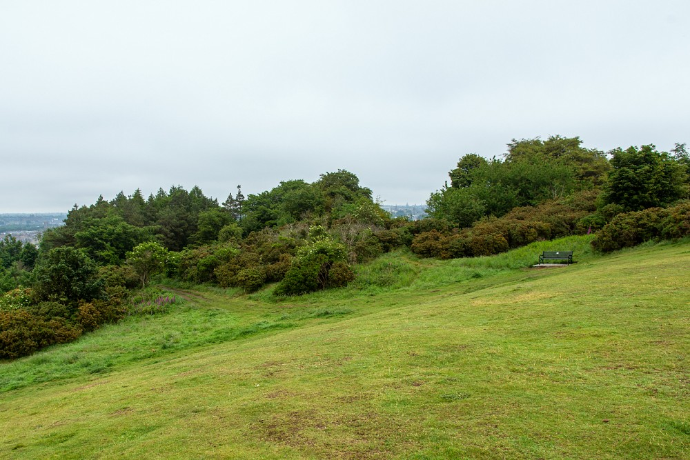 Open area near the top of Easter Craiglockhart Hill