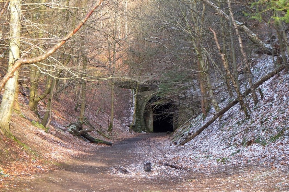South Park Wood - the western portal of the Neidpath Tunnel